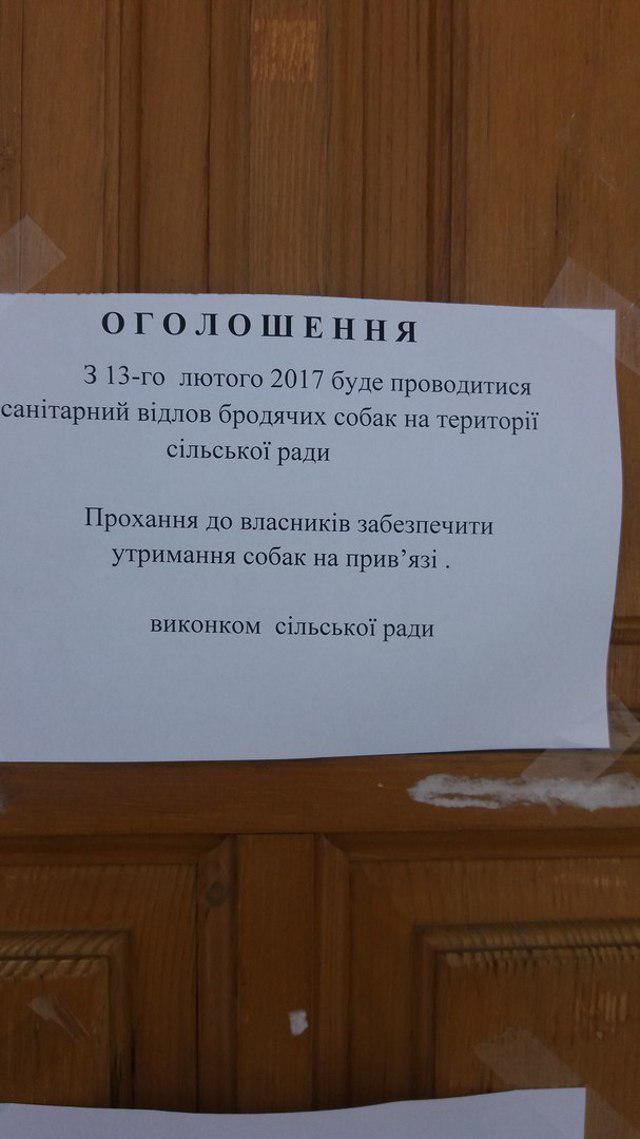 Фото користувача Татьяна Сульжик<br /> у ВК.
