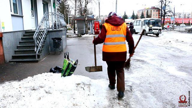 Ділянку у 6 тисяч квадратних метрів Людмила Іванівна зазвичай посипає за допомогою лопати. З початку вулиці і до кінця ділянки