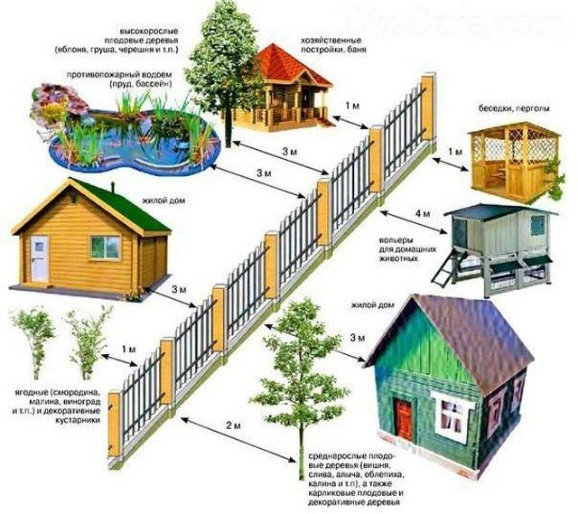 Інфографіка з advocatsergiygula.com