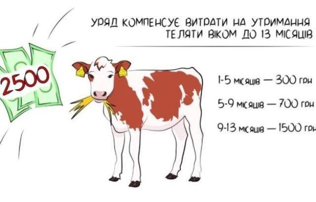 Інфографіка з: rv.gov.ua.