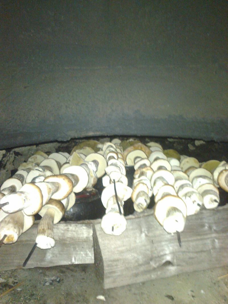 Так гриби сушать у печі