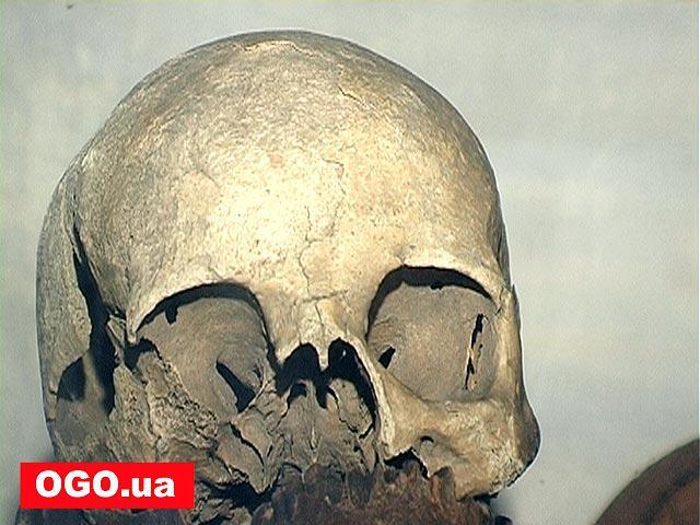 """Заповідник """"Поле Берестецької битви"""" с.Пляшева. Експонати музею"""
