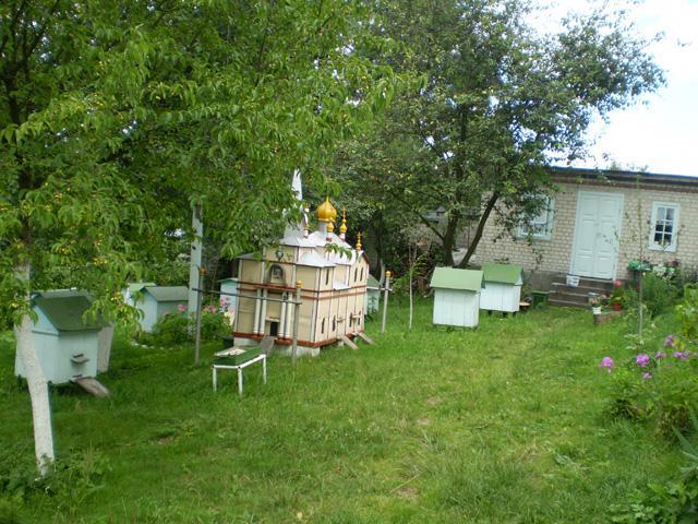 У вулику-монастирі в Корці живуть п'ять бджолиних сімей