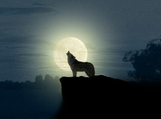 Картинки по запросу Місяць в перигеї
