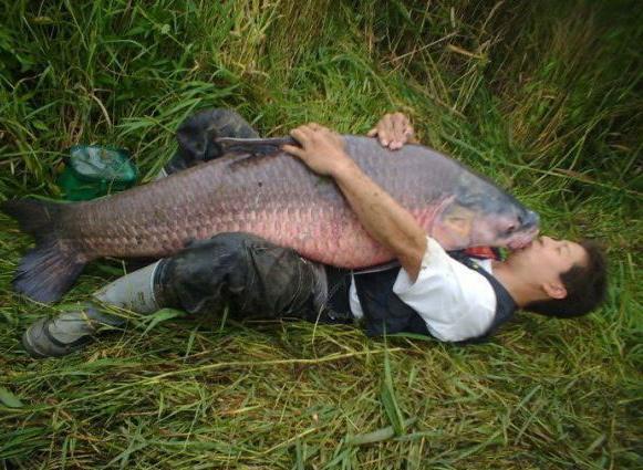 рыбак у него есть сын фильм