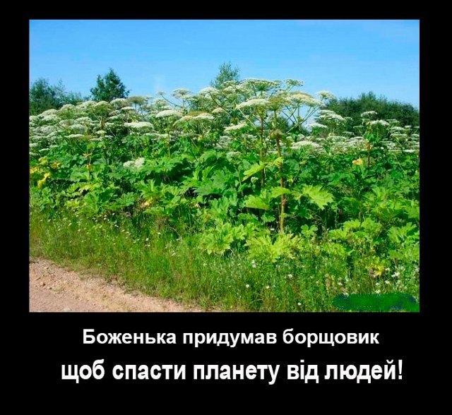 Фото зі сторінки Наталі Пастухової у мережі Фейсбук