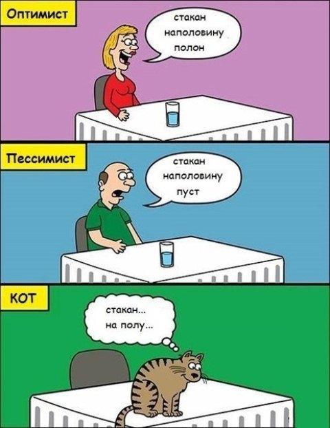 Фото з stebok.net.